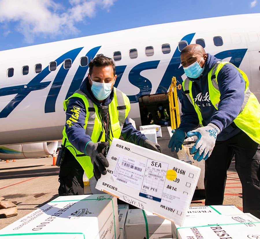 Demand Up, Schedules Stabilizing, More Cargo Per Plane.